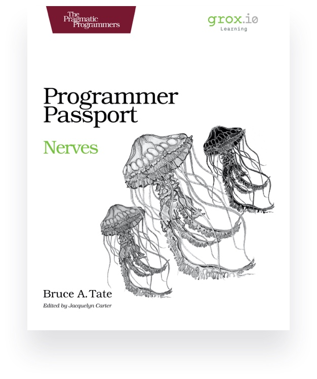 Programmer Passport Nerves